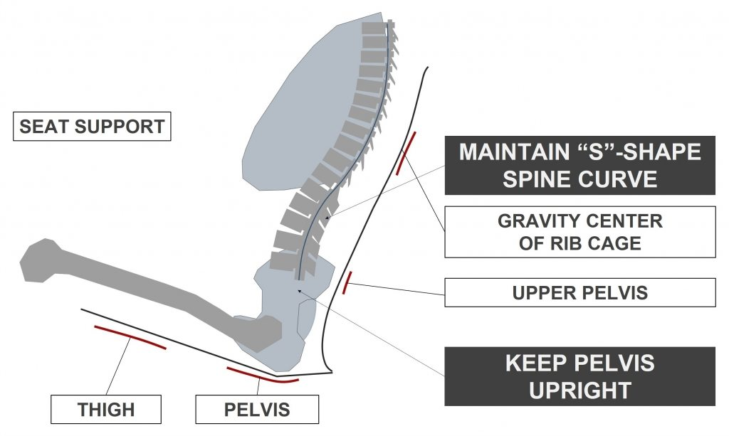 "Seat maintains ""S""-SHAPE spine curve"